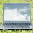 Laptop on grass — Stock Photo
