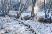 Foggy river in the forest at winter — Stock Photo