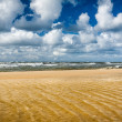 Sandy beach and north sea in summer — Stock Photo