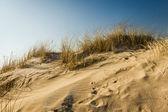 Winter sunrise in frosen beach — Stock Photo