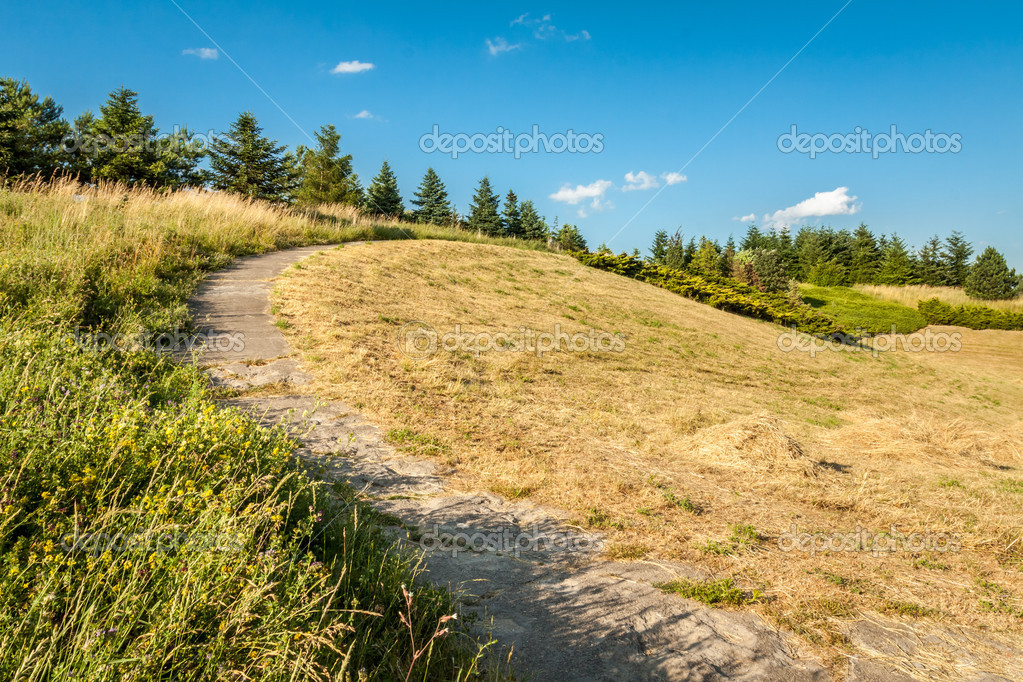 Rural Scene in the summer — Stock Photo #9453827