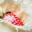 Starwberry close-up splash of milk — ストック写真