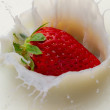 Splash of milk from the falling strawberry — Stock Photo