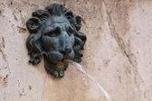 Lion fountain — Stock Photo