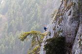 альпинист — Стоковое фото