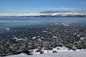 Icy sea in Alaska — Stock Photo
