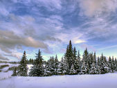 Beautiful winter sky — Stockfoto