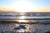 Icy beach at sunset — Stockfoto