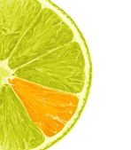 Orange Lemon Slice — Stock Photo