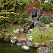 The Japanese Tea Garden in Golden Gate Park, San Francisco. — Stock Photo