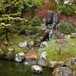 The Japanese Tea Garden in Golden Gate Park, San Francisco. — Stock Photo #8989148