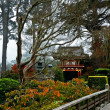 The Japanese Tea Garden in the Golden Gate Park, San Francisco — Stock Photo