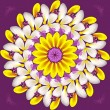 Floral mandala on purple background — Stock Photo
