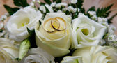 Wedding rings with flowers — Stock Photo