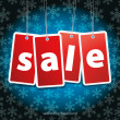 Snow flake background with sale stickers — Stock Photo #8843224