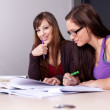 Stock Photo: A couple of students studying together