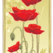 Foto de Stock  : Poppies
