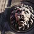 Wooden sculpture of a lion on the door — Stock Photo