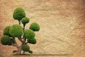 Tree with old grunge paper vintage background — Stock Photo