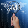 CMS, word in Magnifying glass,network background - Stock Photo