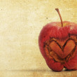 Heart apple in old paper notes background — Stockfoto