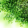 Green leave background texture — Foto Stock