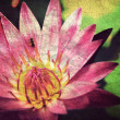 Lotus flower background ,Vintage style — Foto Stock