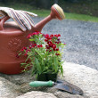Gardening Still Life — Stock Photo
