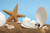 Perła oceanu żarówki — Zdjęcie stockowe