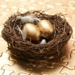 Stock Photo: Nest Egg Strategy