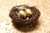 Nest Egg Strategy — Stock Photo