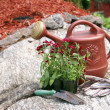 Stock Photo: Gardening Still Life