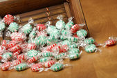 Peppermint Swirl Candy — Stock Photo