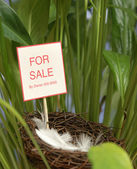 Property for Sale — Stock Photo