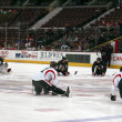 Ottawa Senators Stretches — Stock Photo