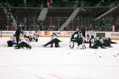 Ottawa Senators Stretches — Stock Photo