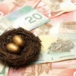 Stock Photo: Wealthy Nest Egg