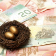 Wealthy Nest Egg — Stock Photo