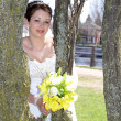 Bride in the Trees — Stock Photo