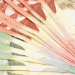 Canadian Currency - Stock Photo