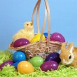 Easter Time — Stock Photo #9613818