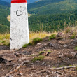 Boundary Stone — Stock Photo