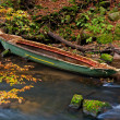 Sunken Rowboat — Stock Photo #8072409