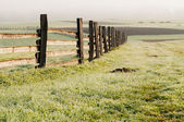 Autumn Field with Fence — Stock Photo