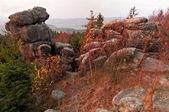 Autumn Morning Landscape — Stok fotoğraf