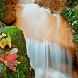 Stock Photo: Beautiful Waterfall