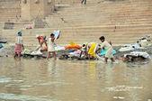 Indian Laundry in Varanasi — Photo