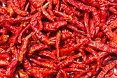 Dried chili background texture — Stock Photo