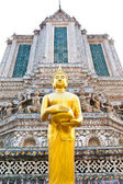 The standing Buddha pagoda in the background — Stock Photo