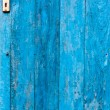The blue door — Stock Photo